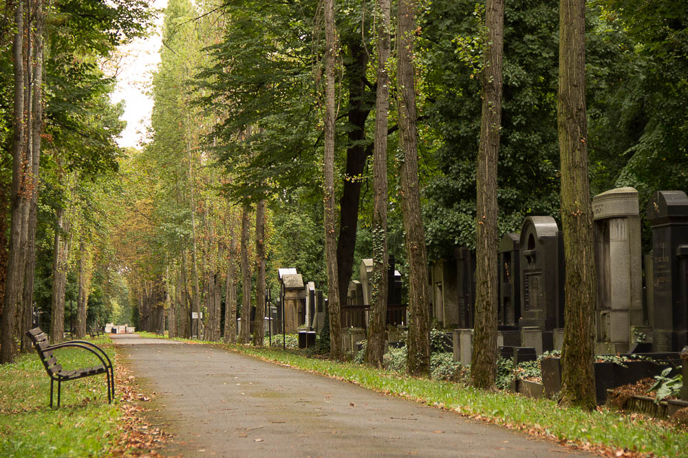 Prag-Tipps-Friedhof-Bank