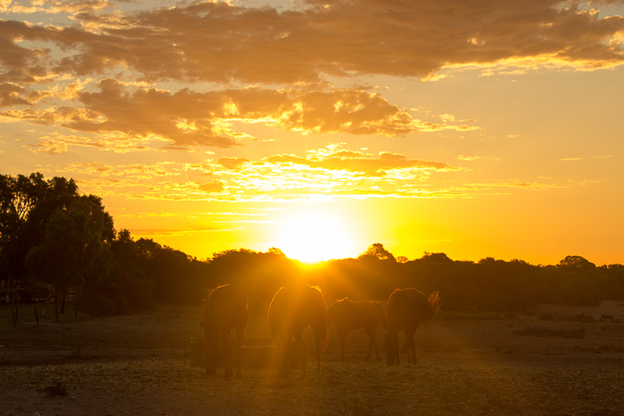 Pink_Compass-DSLR-Kamera-Reisefotografie-Sonnenuntergang