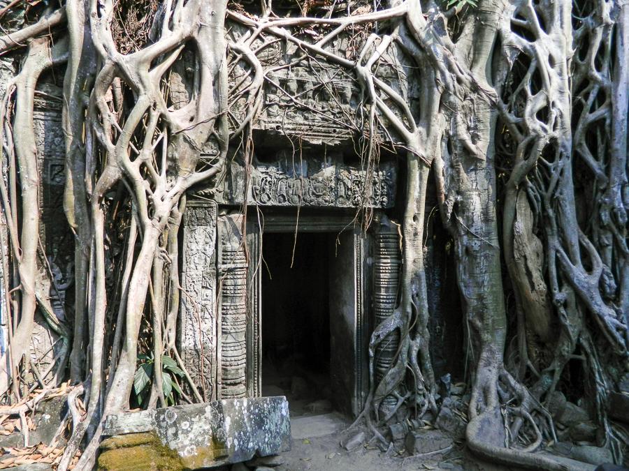 Kambodscha-Angkor-Wat-Tempel-Taprohm