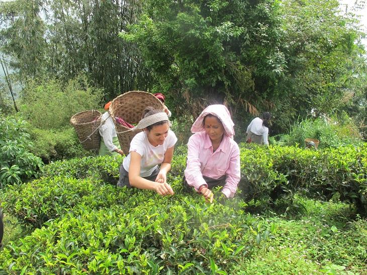 Allein reisende Frauen in Indien - Indien Kleidung beim Arbeiten