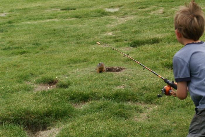 Kanada Visum - Hörnchen angeln
