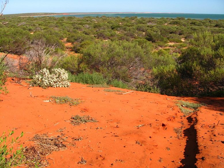 Was kosten 2 Monate Australien - Westküste
