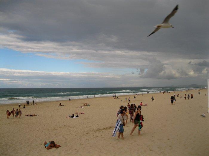 Surfers Paradise 036