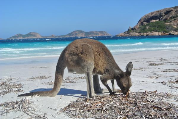 unberuehrte-naturwestaustralien