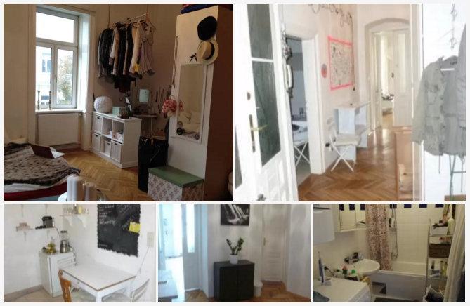Airbnb-Wien-Erfahrung