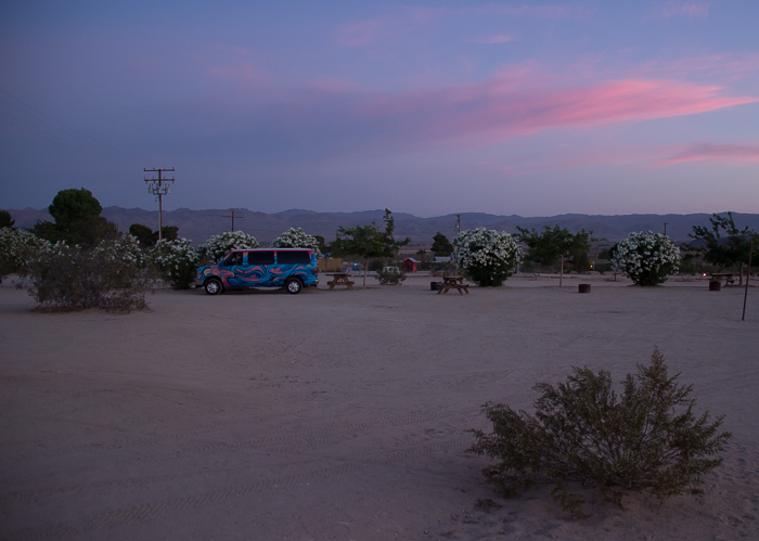 Pink_Compass_Kosten-Roadtrip_Joshua_Tree