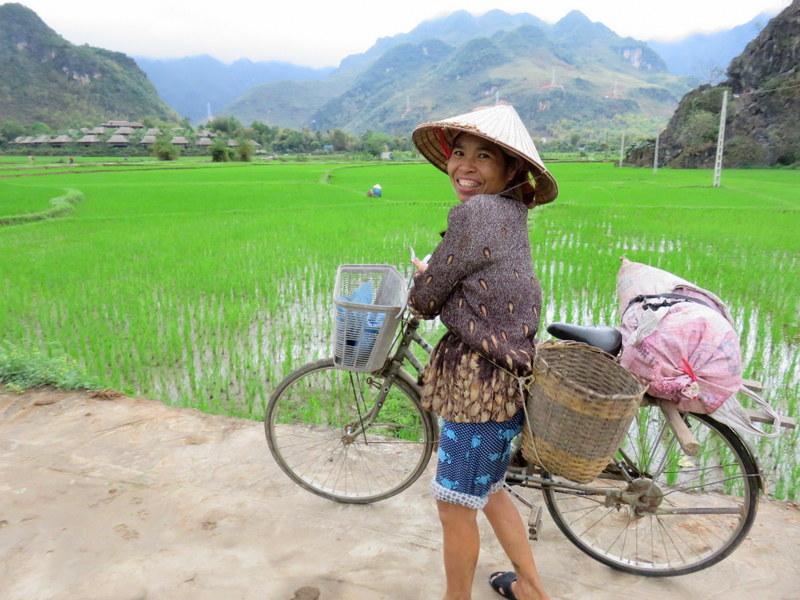 Reisen mit Hashimoto und Schilddruesentabletten - Reisernte in Mai Chau Vietnam