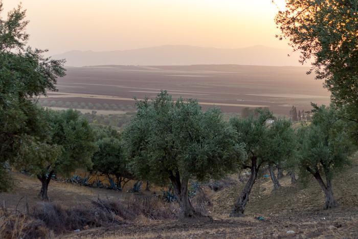 23 märchenhafte Bilder, die Dich sofort nach Marokko reisen lassen…