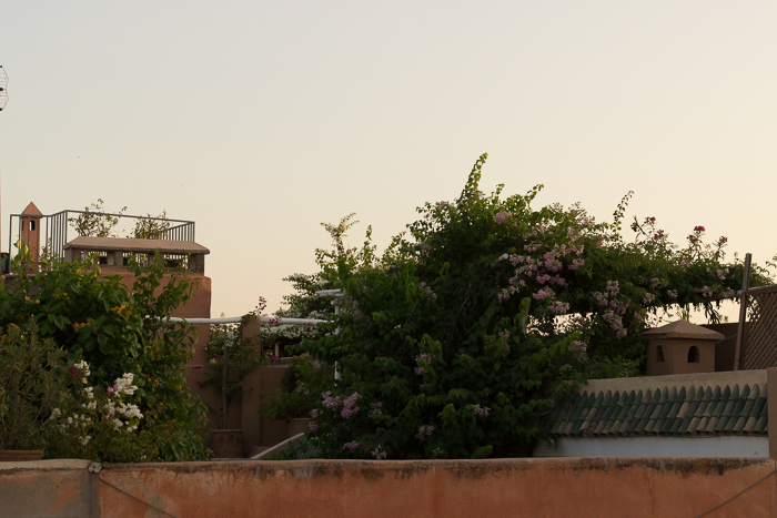 Der komplette Pink Compass Guide für Marokko: Alles, wirklich alles, was Du wissen solltest! – Teil 1