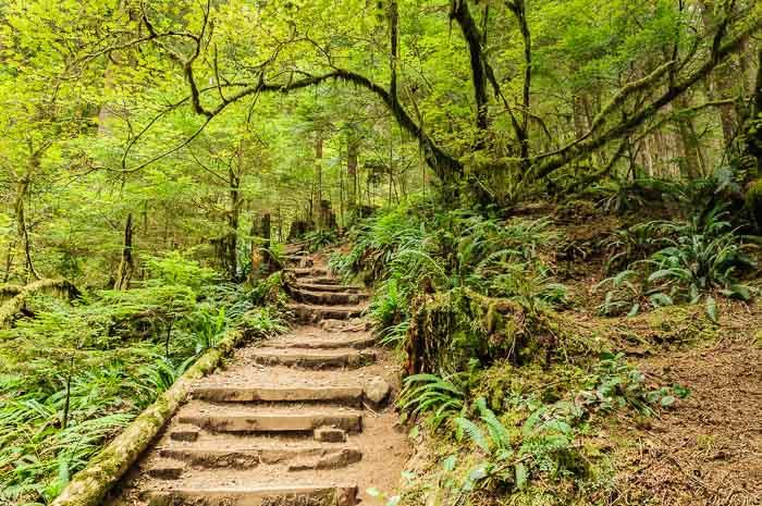 Vancouver Sehenswürdigkeiten Fotonomaden Powel Trail