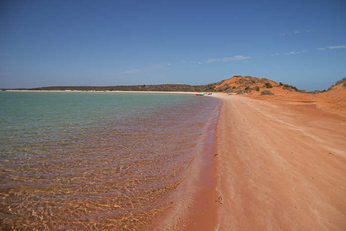 Westaustralien Komfortzone SharkBay