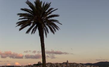 Ein Yoga Retreat auf Mallorca – nicht nur für die Seele gut…