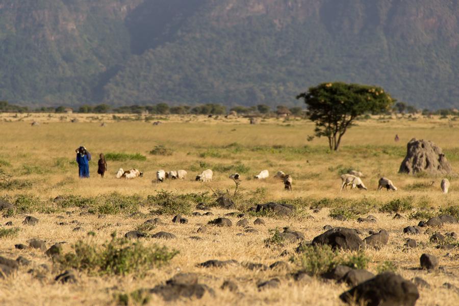 Gadventures Safari Tansania Massai