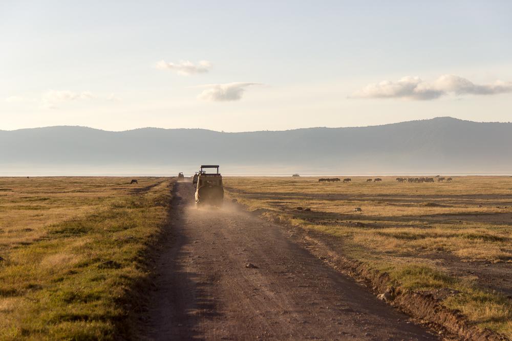 Gadventures Safari Tansania
