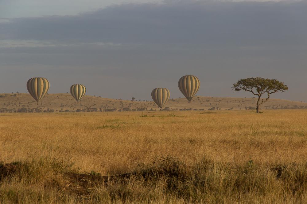 Pink Compass Safari Tansania Heissluftballon