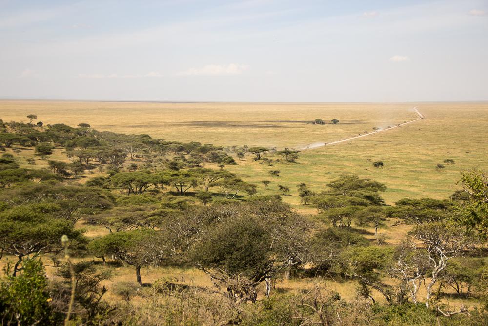 Gadventures Safari Tansania Landschaft